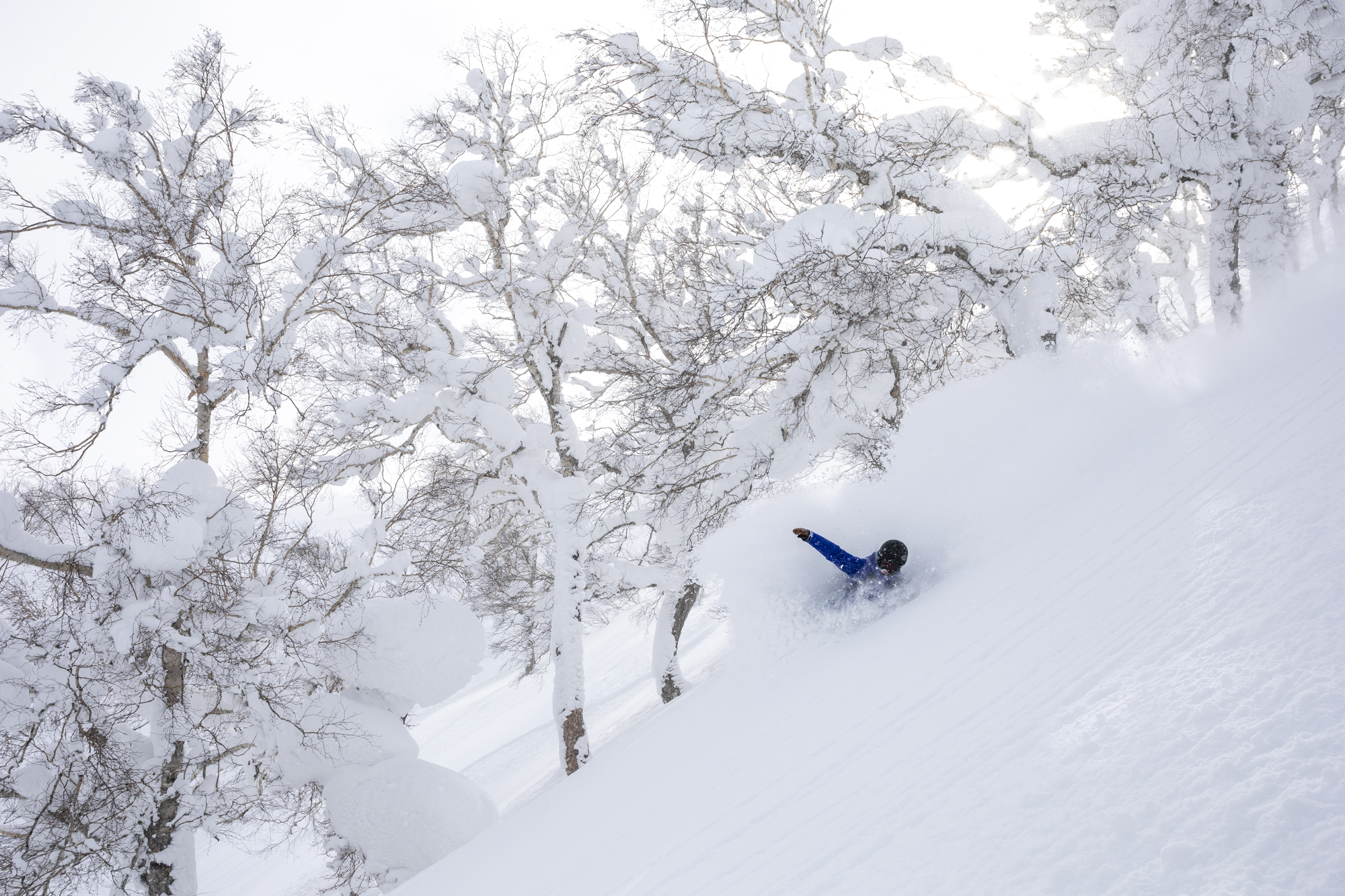 Enjoying the universal language of deep pow Japan backcountry! Photo by Ben Girardi.