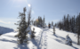 #BestVoileDay Ski Photo Competition