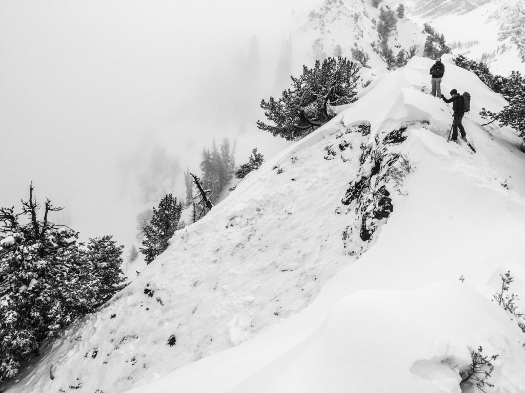 Looking over the ridge to an avalanche slide path.