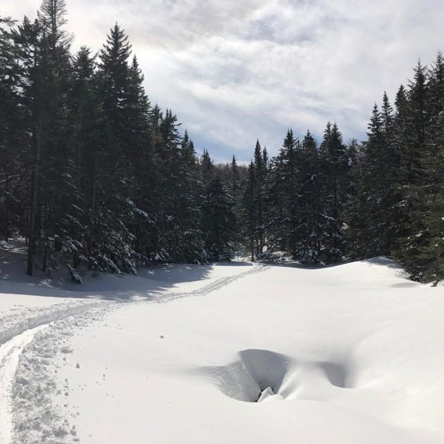 challenge trail
