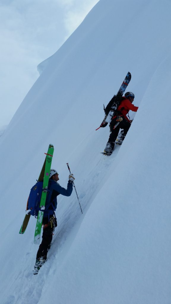 Bring plates_verts-ski-expedition