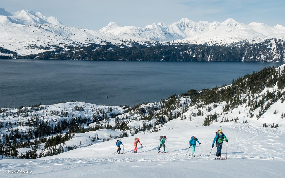 sea_and_ski_alaska_skinning.jpg