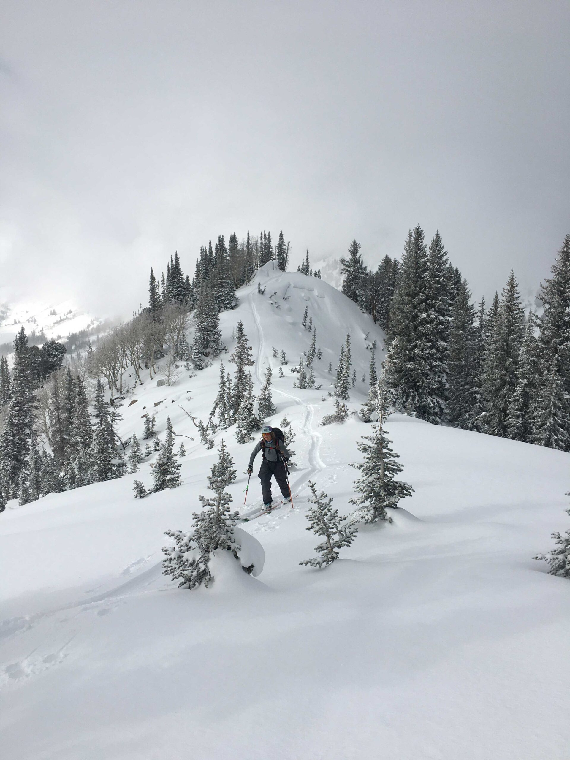 guided_ski_tours_in_utah_grizzly_gulch