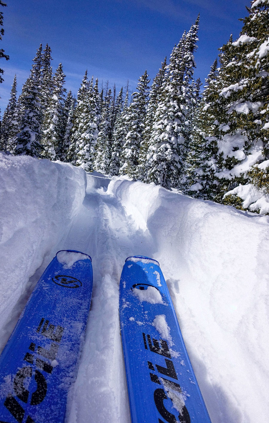 Voile Vectors are the ideal ski for long backcountry tours with variable conditions.